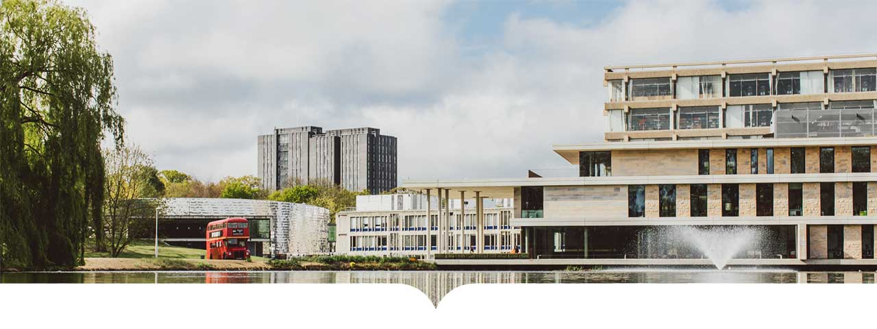 Universidad de Essex