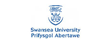 Universidad de Swansea